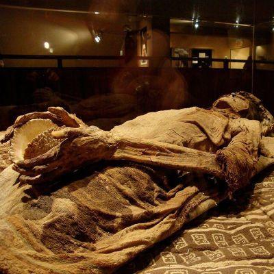 turismo-peru museo arqueológico bruning