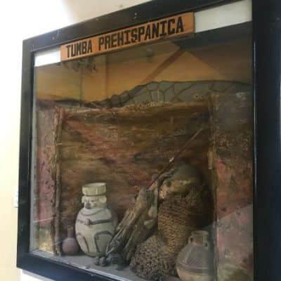 turismo-peru museo arqueológico de huaraz