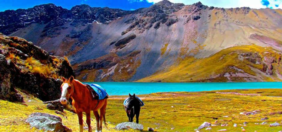 tour en caballo a la montaña siete colores