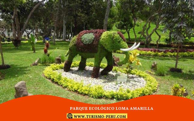 parque ecologico la loma amarilla para niños