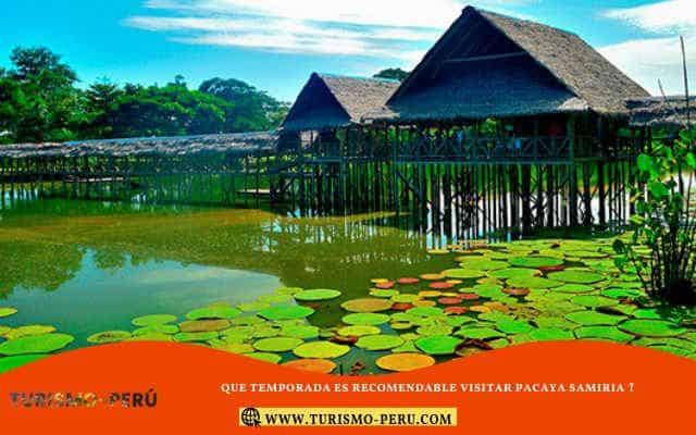 region loreto turismo pacaya samiria