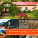 Granja Porcón Cajamarca ¿cómo llegar y qué ver?