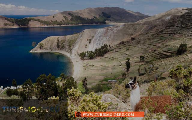 catamaran lago titicaca