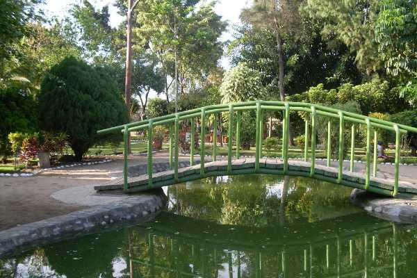 jardin botanico jaen cajamarca